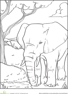 Elephant Coloring Page | Worksheets, Adult coloring and Coloring books