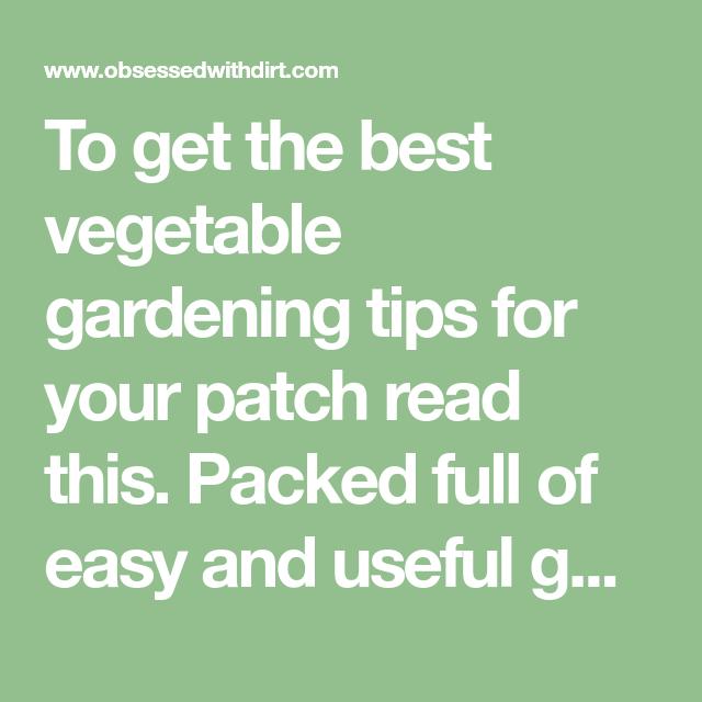 5 Vertical Vegetable Garden Ideas For Beginners: Weird Vegetable Gardening Tips That Actually Work
