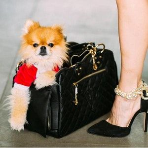 The Best Dog Purses For Every Outing Luxury Pet Carrier Pet Carriers Dog Purse