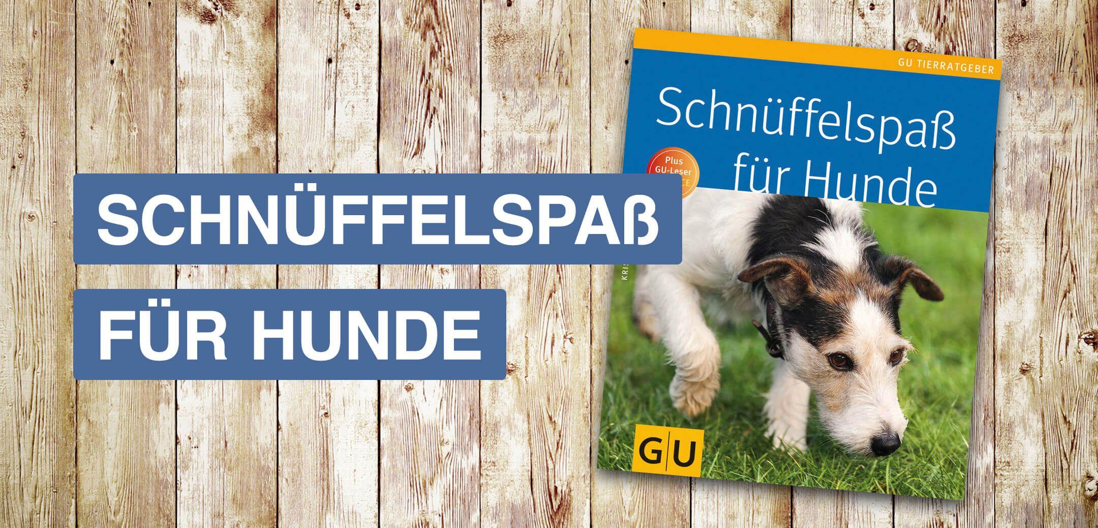 Buch Schnuffelspass Fur Hunde Mit Bildern Hunde Bucher Spass