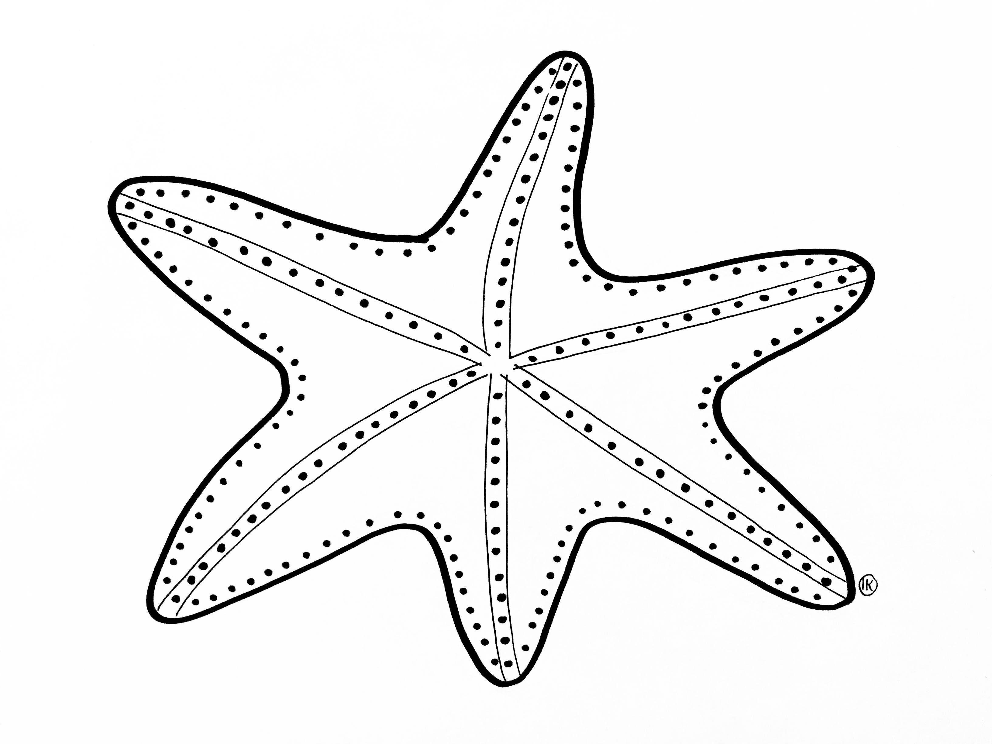 Kleurplaten Van Zeedieren.Kleurplaten Thema Zee Zeedieren Oceaan Kleurplaat Oceaan