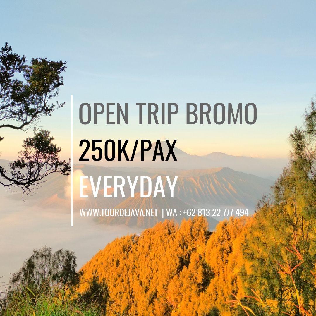 Paket Wisata Bromo Midnight Perjalanan Wisata Menggunakan