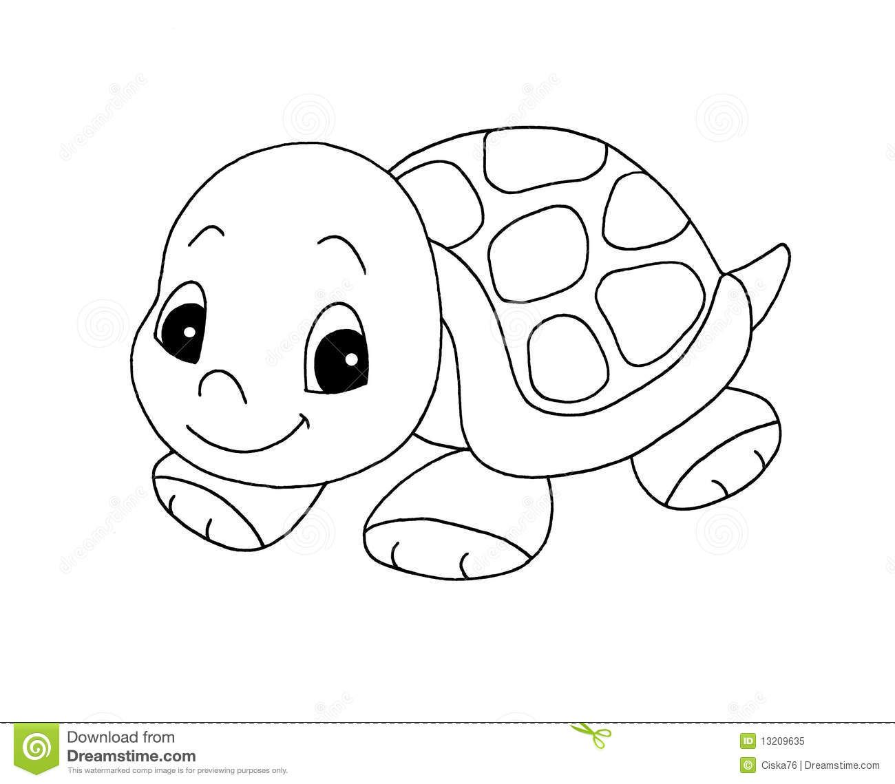 Box Turtles Are How To Draw A Turtle Of A Deer In