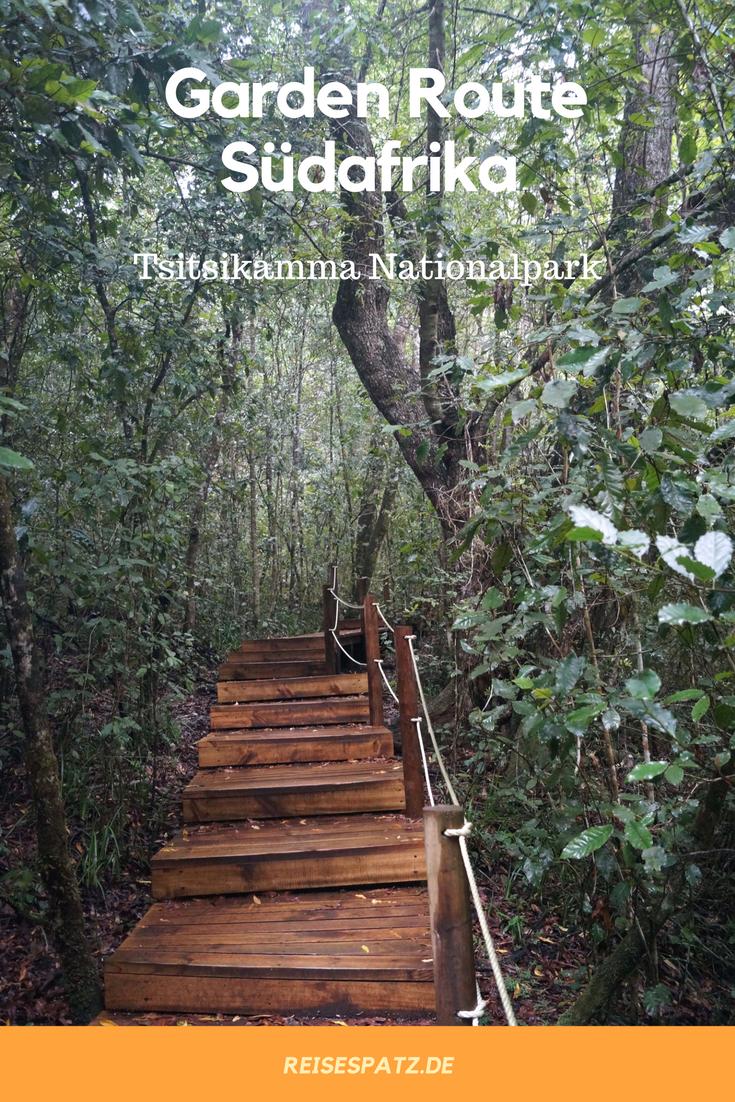 Photo of Tsitsikamma Park Südafrika – Tipps für deinen Aufenthalt