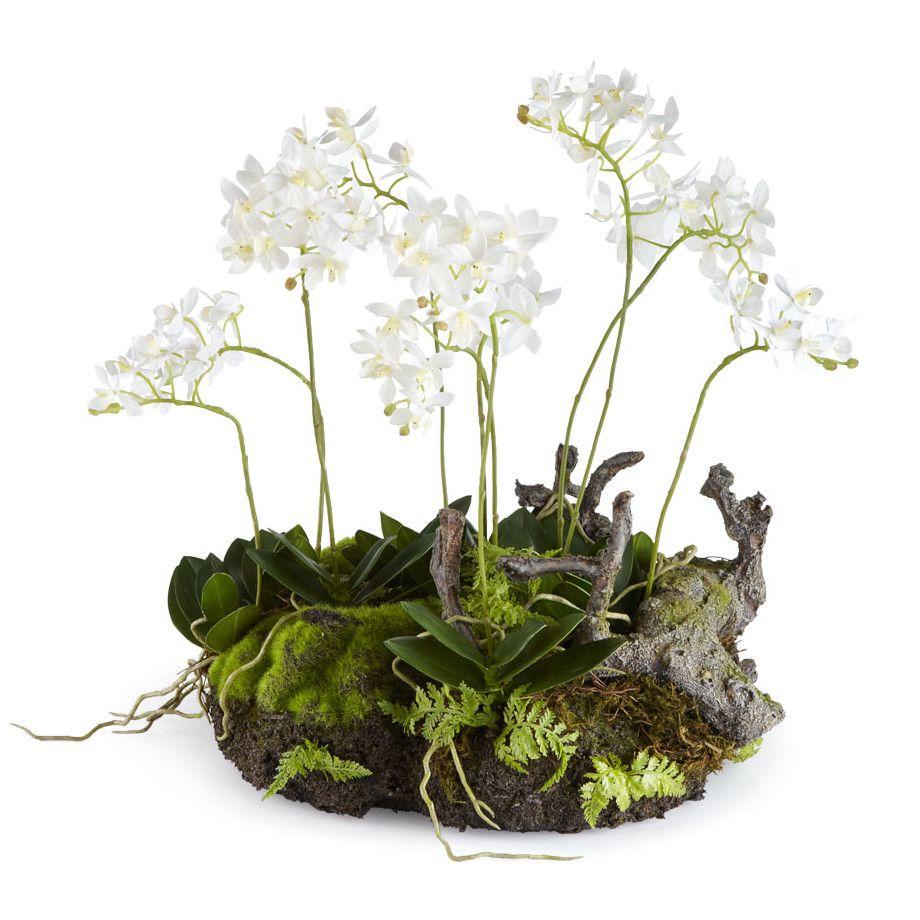 Napa Home and Garden Mini Dendrobium Rustic Wreath Silk
