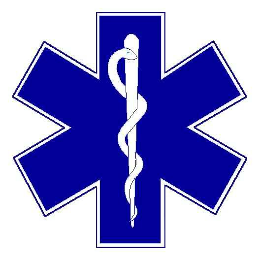 this is typically a six pointed colored blue star with white borders rh pinterest co uk ems logistics technician ems logistics technician job description