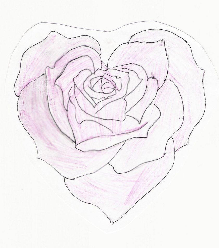 Heart Shaped Rose Drawing Heart Shaped Rose by Feeohnah Art