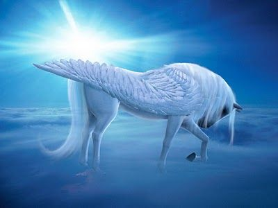 .,white unicorn in a world of fairy . .