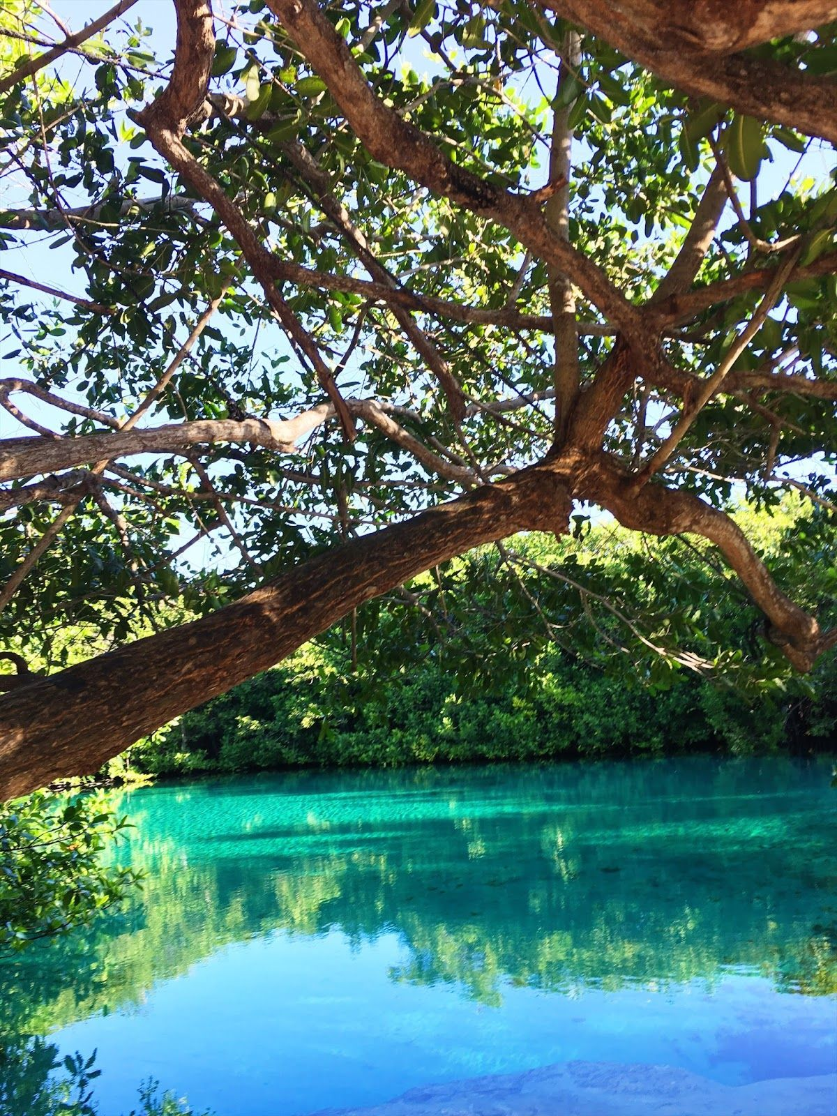 From the corners of the Curve.: A travel guide to Tulum