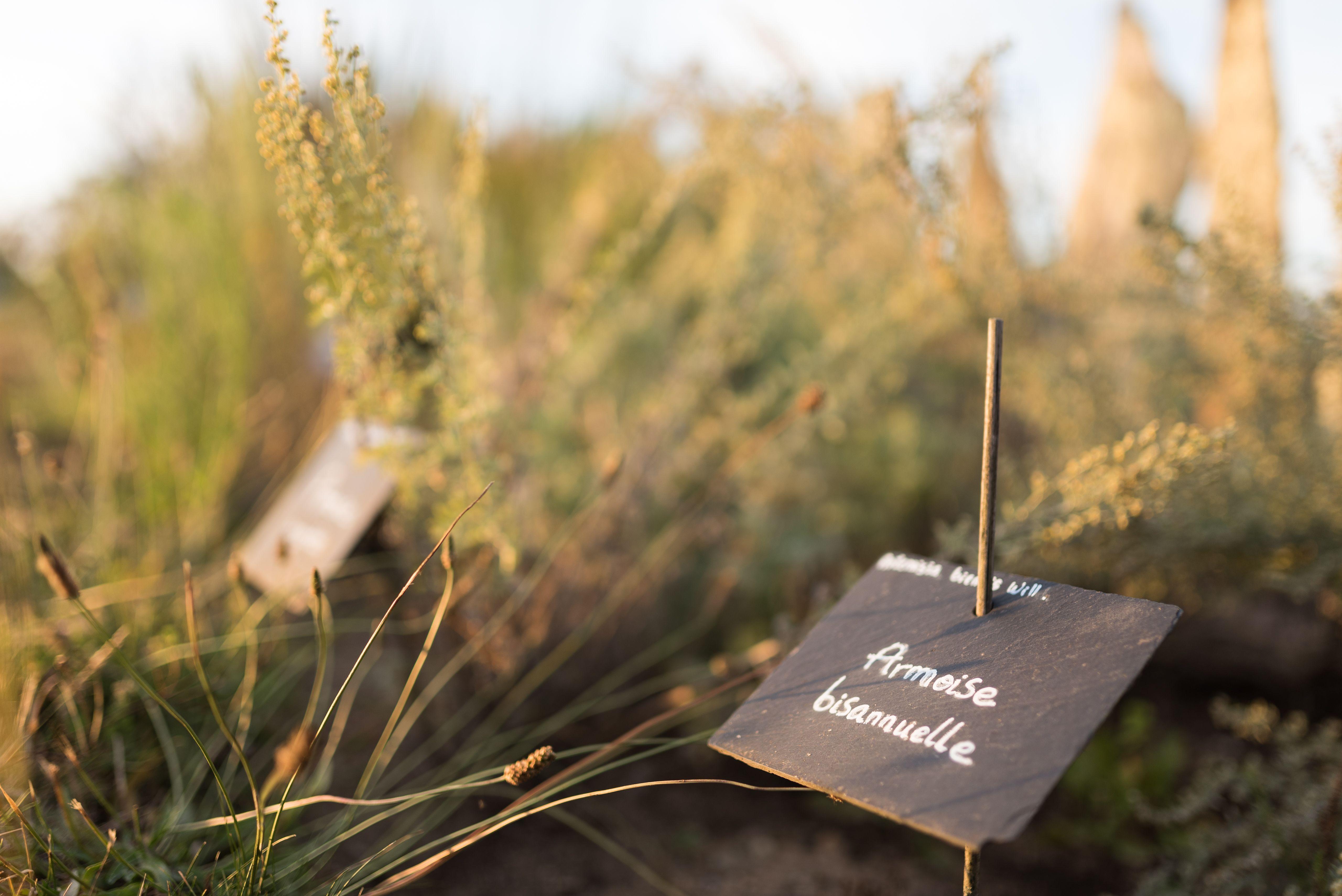 Le Jardin Botanique Yves Rocher Aux Couleurs De L Automne