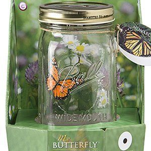I bought one of these last summer and sat it on our screen porch. It was quite a conversation piece.