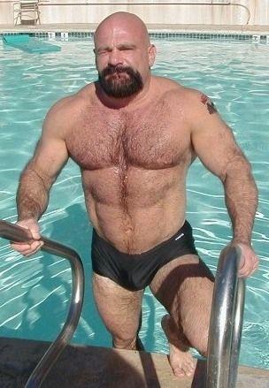 Bear daddy hot