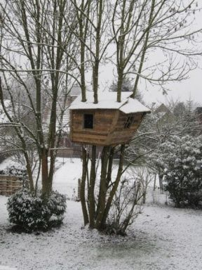 One day, a dad promised his daughter she would get a pallet tree-house…