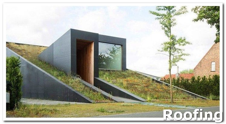 Roofing Design Whenever You Have To Climb Up Onto Your Roof To Work Wear Rubber Boots Even If It S Sunn Green Roof System Green Architecture Green Roof