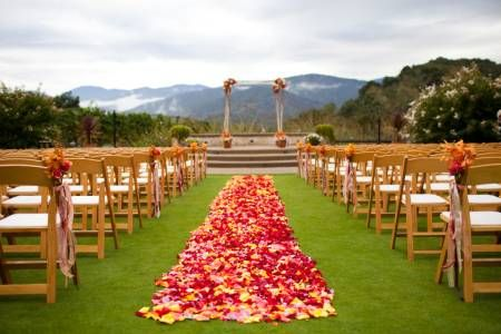 Tapete de casamento com pétalas de flores