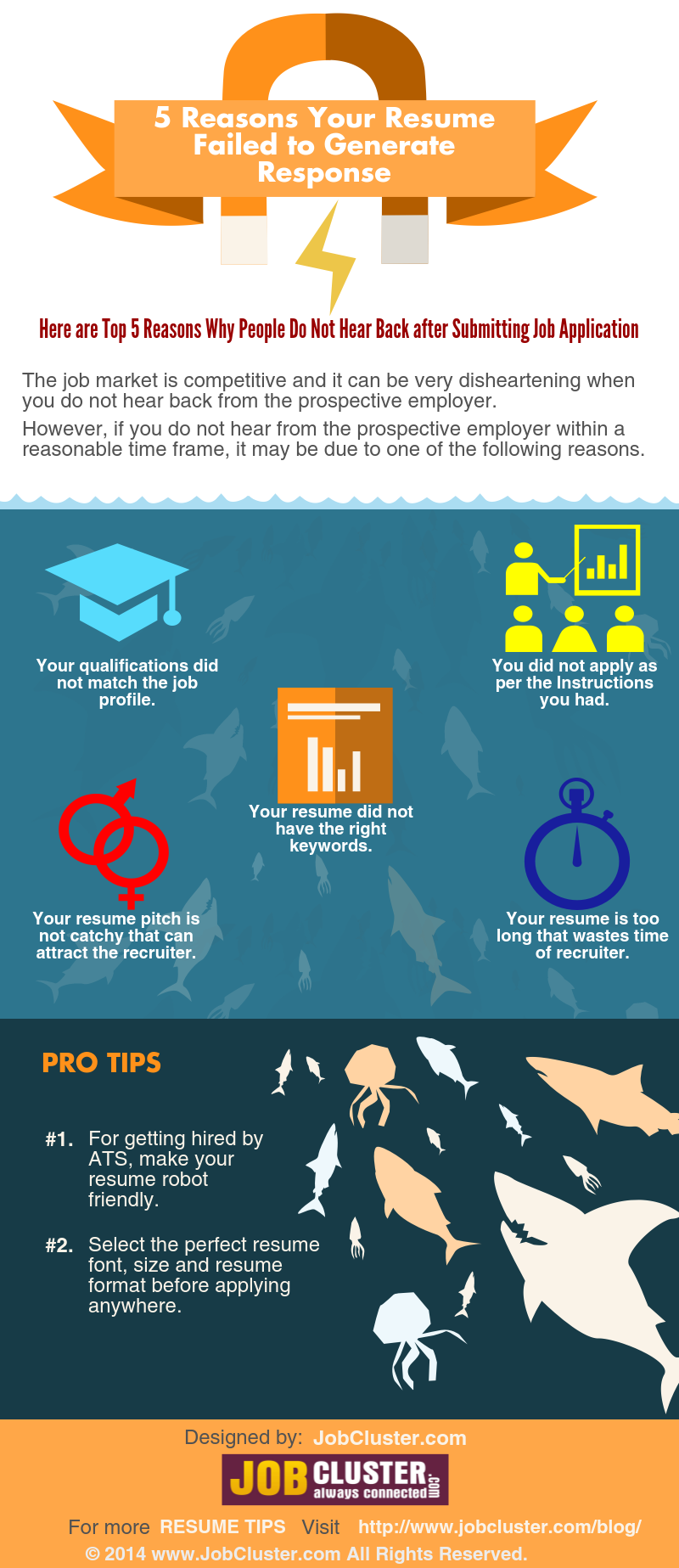 Resume Pitfalls- 5 Things You Should Avoid Doing- Infographic ...