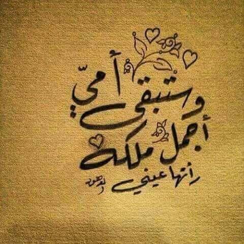 وستبقى أمي أجمل ملكة رأتها عيني Like4like
