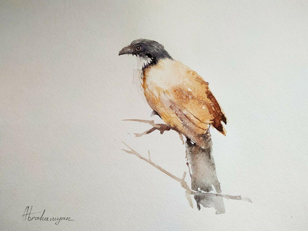 Bird of paradize, Birds, Watercolor artwork, Handmade,Original painting on paper #Realism