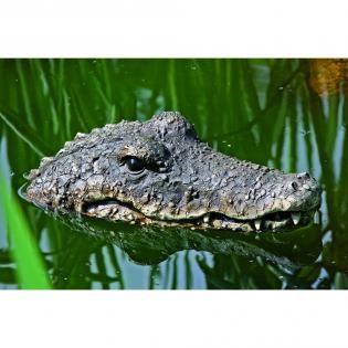 Krokodil drijvend 17€