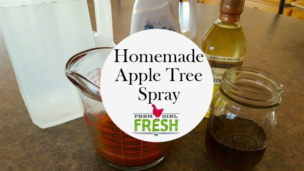 Homemade Apple Tree Spray Apple tree, Apple, Homemade