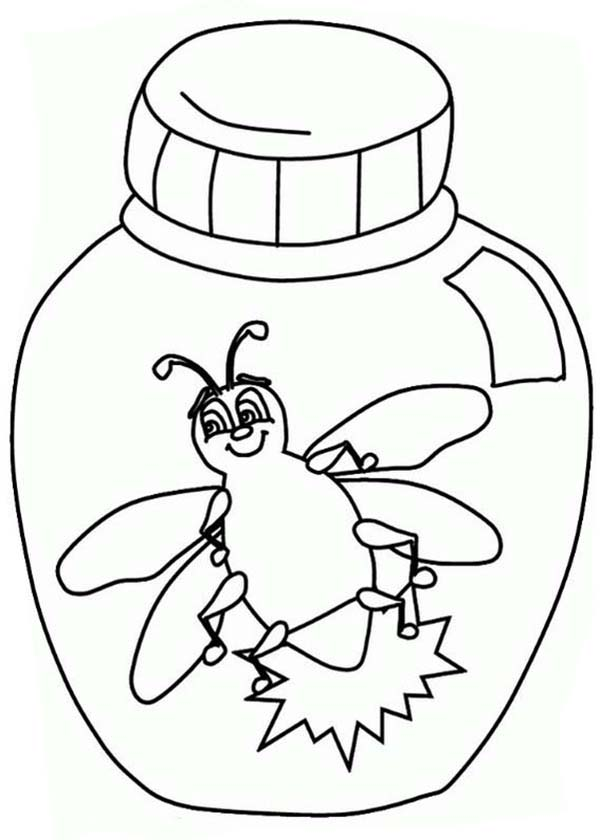 firefly in a jar coloring page  color luna