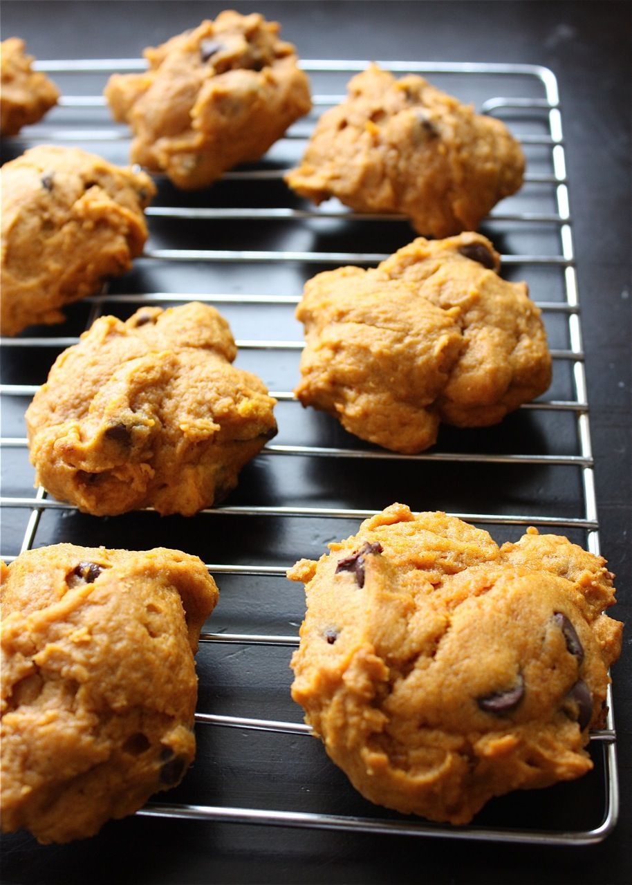 Pumpkin Chocolate Chip Cookies | A Big Mouthful