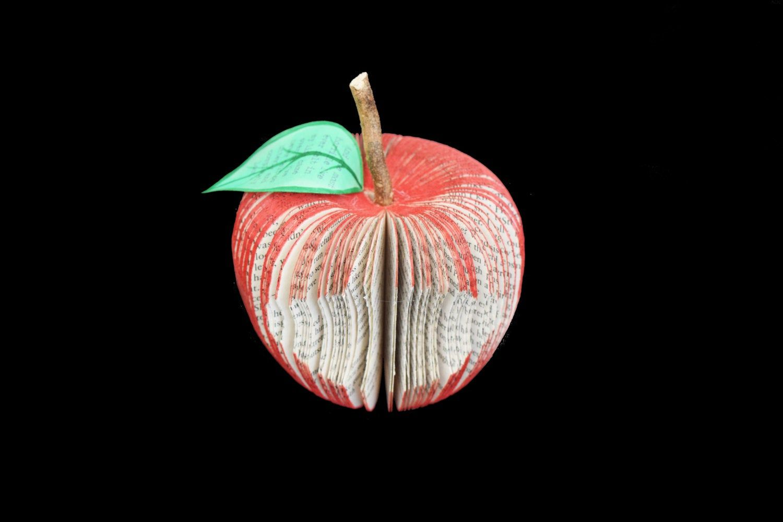 Vampire Diaries Apple Red Apple Handmade From Vampire Etsy In 2020 Paper Fruit Vampire Diaries Books Book Art