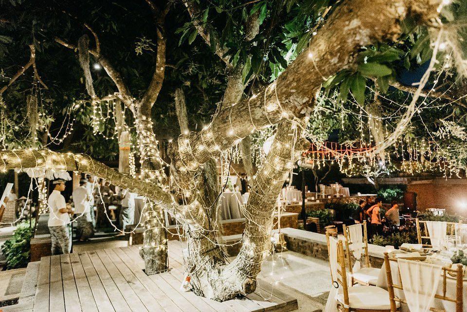 Tree Wedding Decorations Trending This Wedding Season Wedding Tree Decorations Diy Outdoor Weddings Outdoor Wedding Decorations
