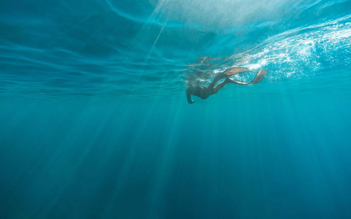 Pin On Snorkle Dive Wallpaper
