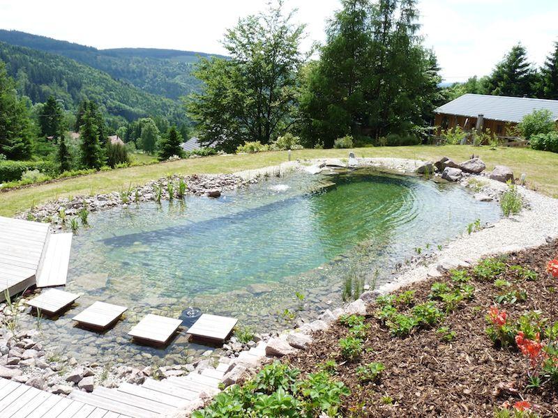 filtre piscine biologique