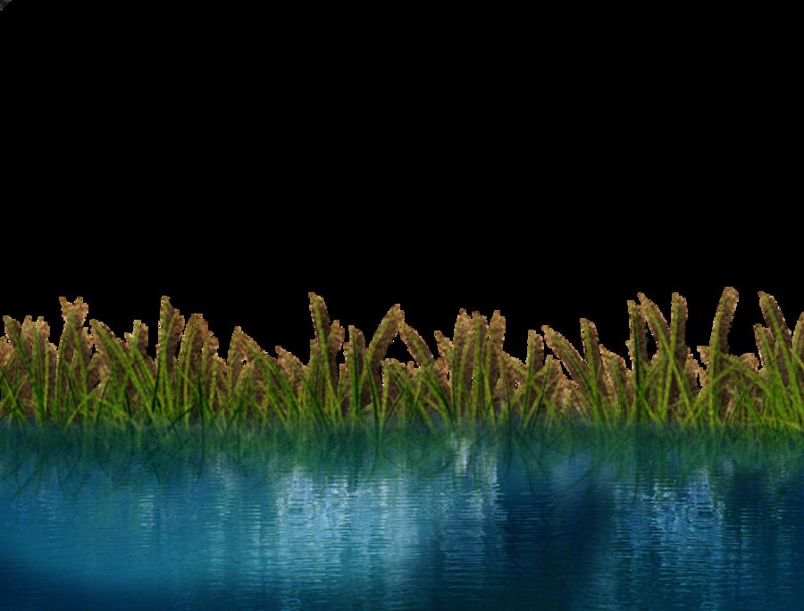Pin De Poison Ivy En LANDSCAPE DETAILS