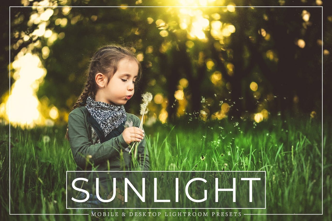 How to add sunlight in lightroom