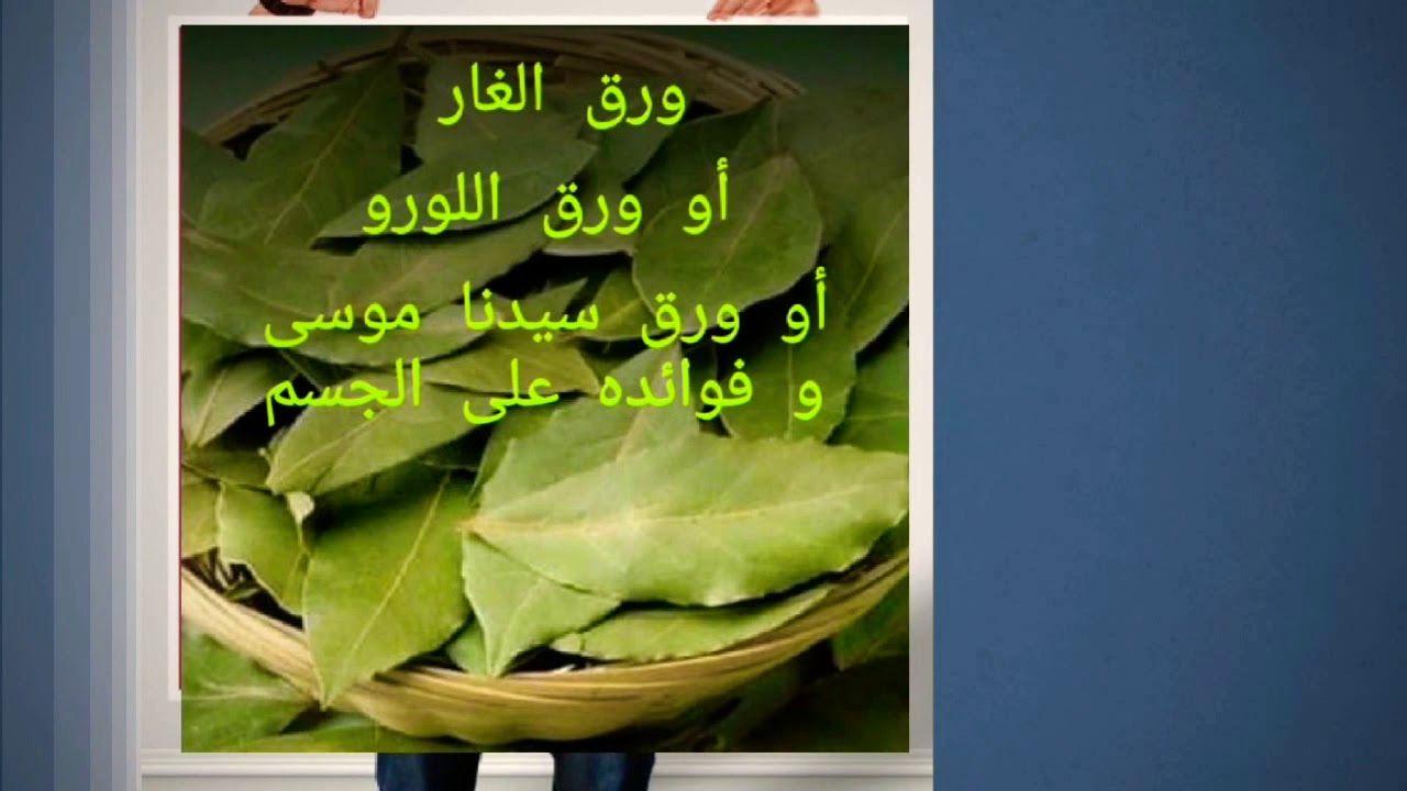 136 فوائد ورقة سيدنا موسى اللورو أو الغار Vegetables Lettuce