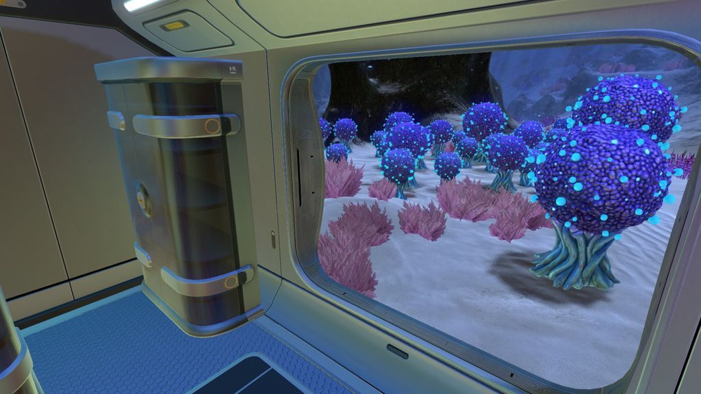 Koosh Zone Biome - Window looking out to ocean floor