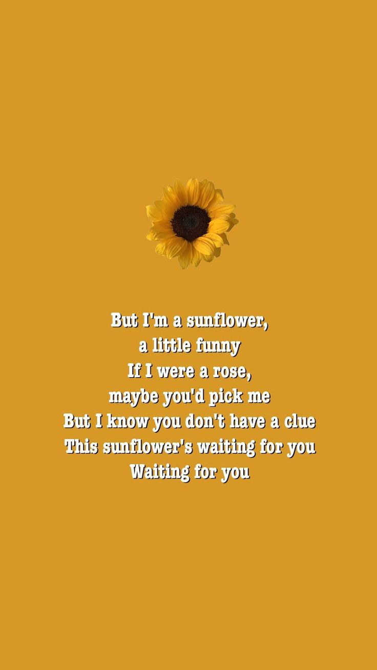 Pin By Brooke Anderson On Wallpaper Sunflower Poem Sunflower Quotes Loser Quotes