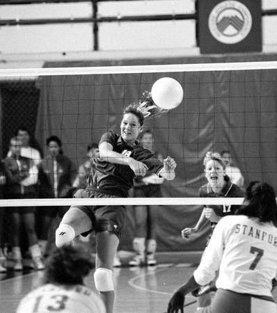 Michele Fellows Lewis Byu Volleyball Sport Hall Lewis Byu