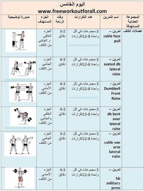 افضل جدول تمارين كمال الاجسام Arm Workout Workout Image