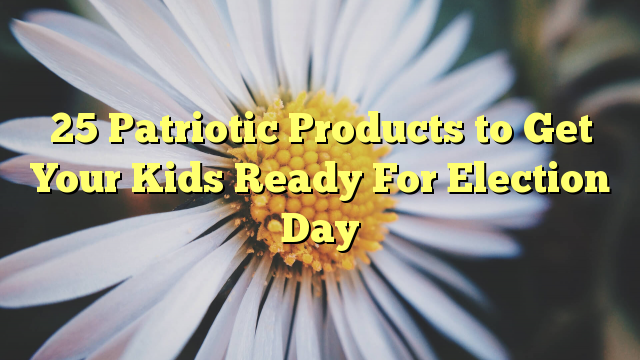 25 Patriotic Products to Get Your Kids Ready For Election Day - http://doublebabystrollerreviews.net/blog/2016/10/03/25-patriotic-products-to-get-your-kids-ready-for-election-day/
