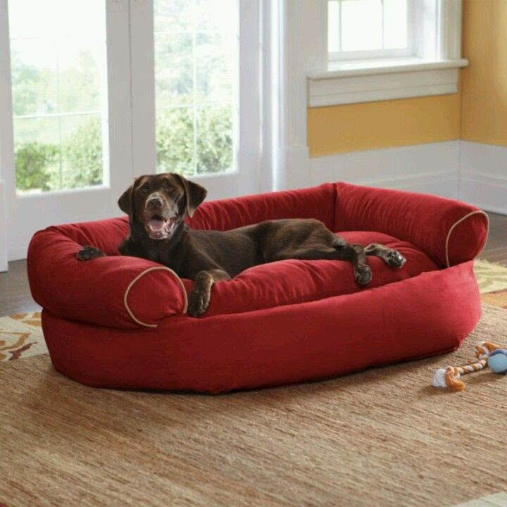 Pin By Christa Arvin Campbell On This Is What I Need Dog Sofa Bed Dog Couch Dog Sofa