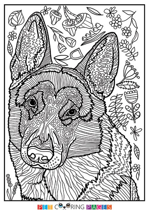 German Shepherd Dog Coloring Page With Images Dog Coloring