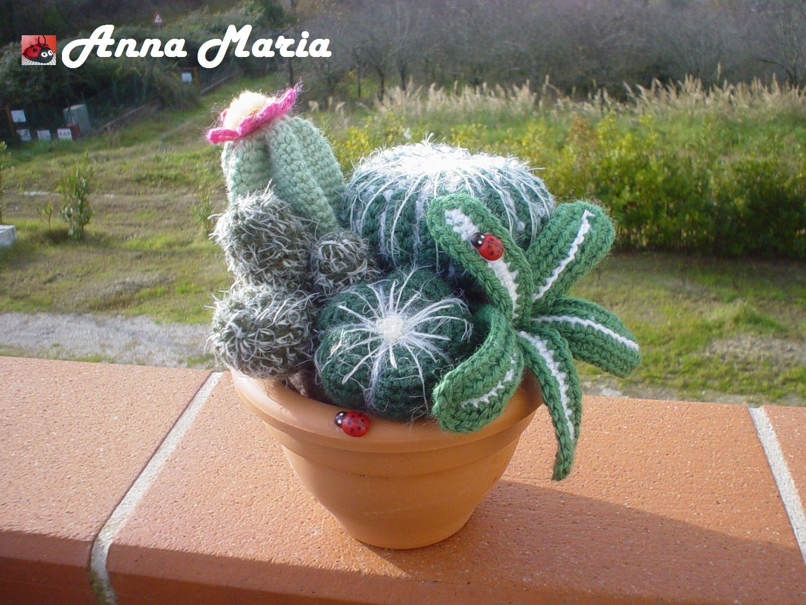 Cactus piante grasse all 39 uncinetto piante grasse for Piante grasse uncinetto