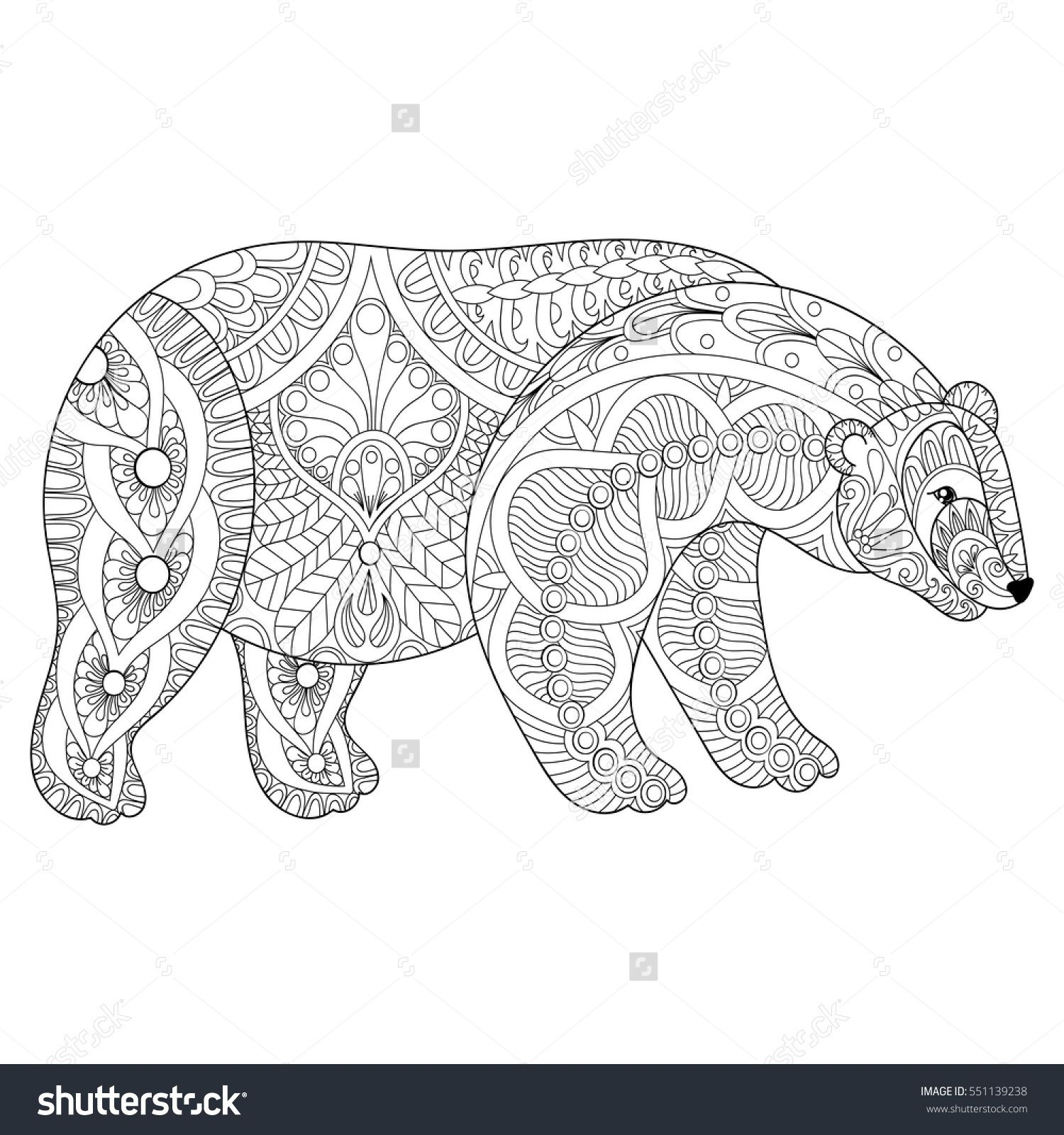 vector zentangle polar bear head for adult anti stress coloring pages book white bear