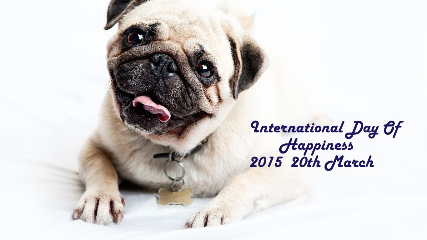 #internationaldayofhappiness #happiness #Happy Celebrate Happiness by spreading happiness