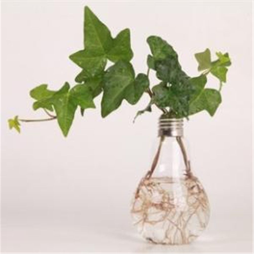 hanging stand light bulb shape plastic flower air plant container