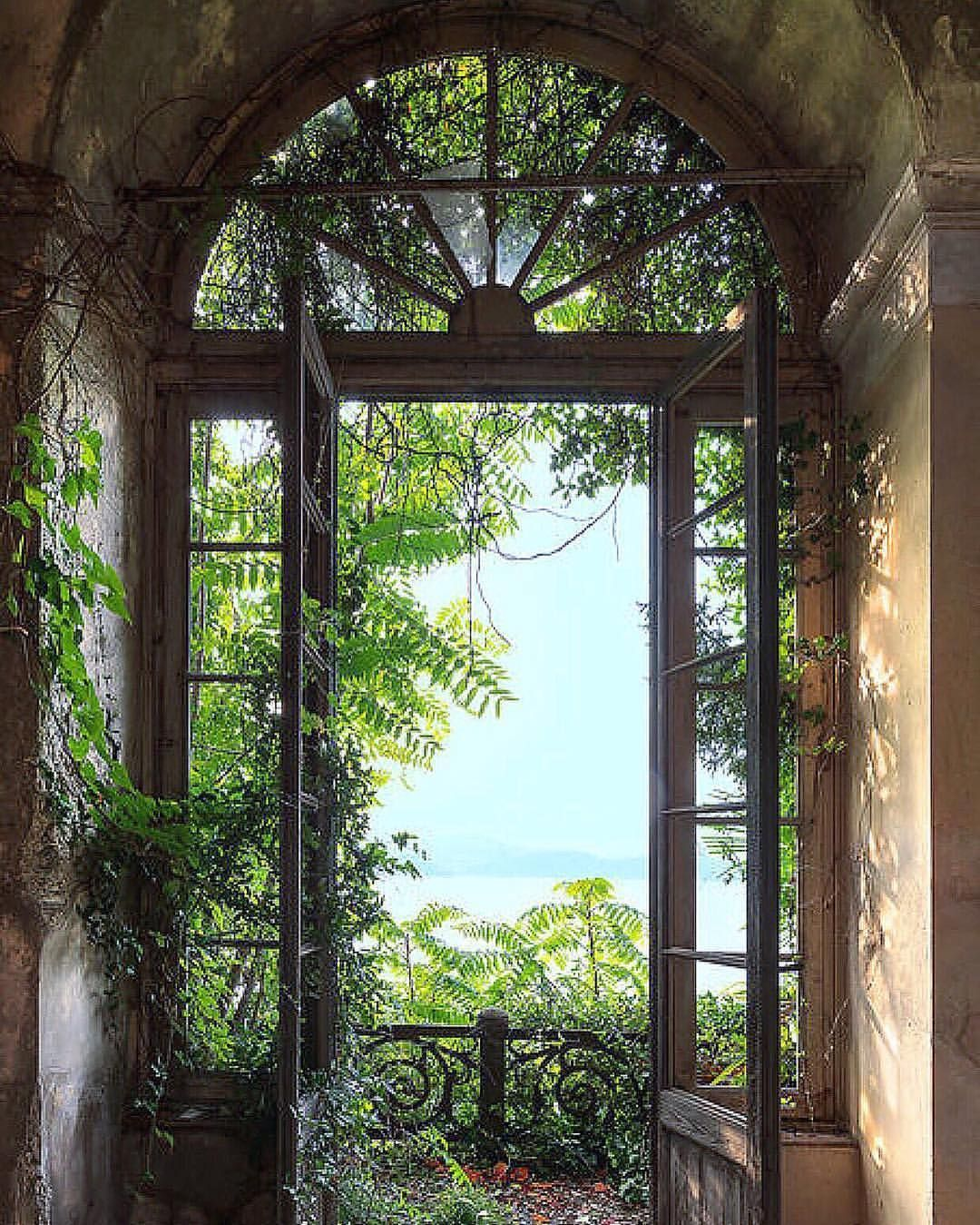 Open Window At Dusk: Pin By Elainetravels 1 On Flowers & Gardens In 2019