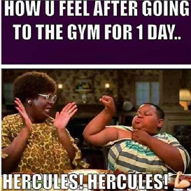1c83d81eec8bb7ec8c779514e86b3833 soo true hercules!!!! workout gym meme gym pinterest
