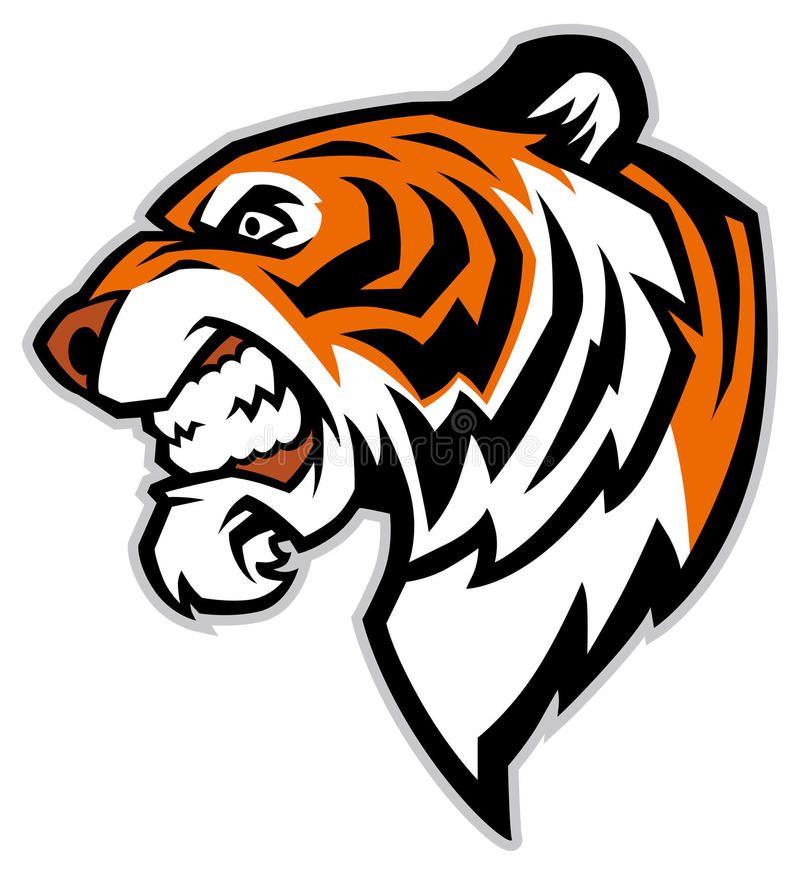 Tiger Head Mascot Vector Of Tiger Head Mascot Sponsored Ad Sponsored Head Vector Mascot Tiger Line Drawing Mascot Design Tiger Head