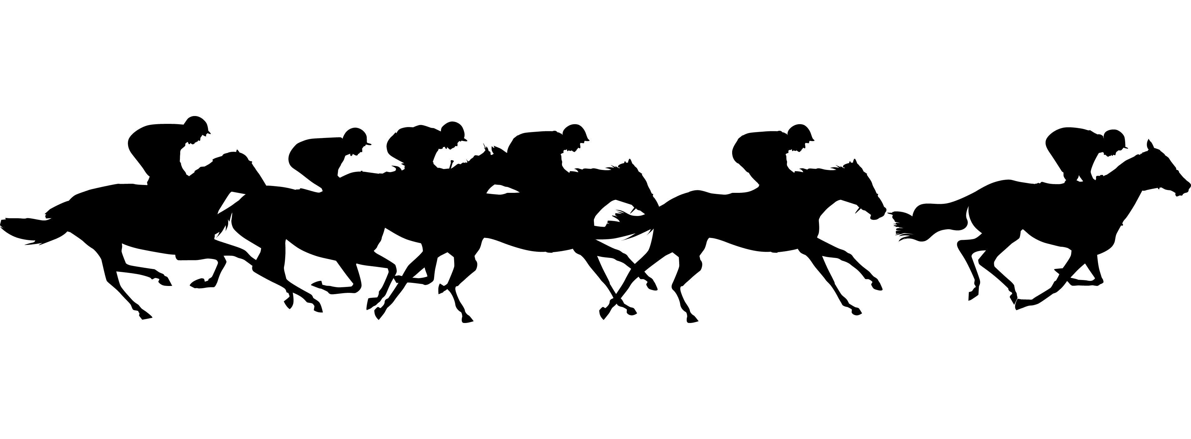 3800x1400 image | Horse tattoo, St tropez spray tan, Horse ...