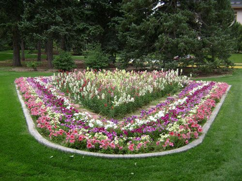 Superieur Unusual Flower In The Garden Design