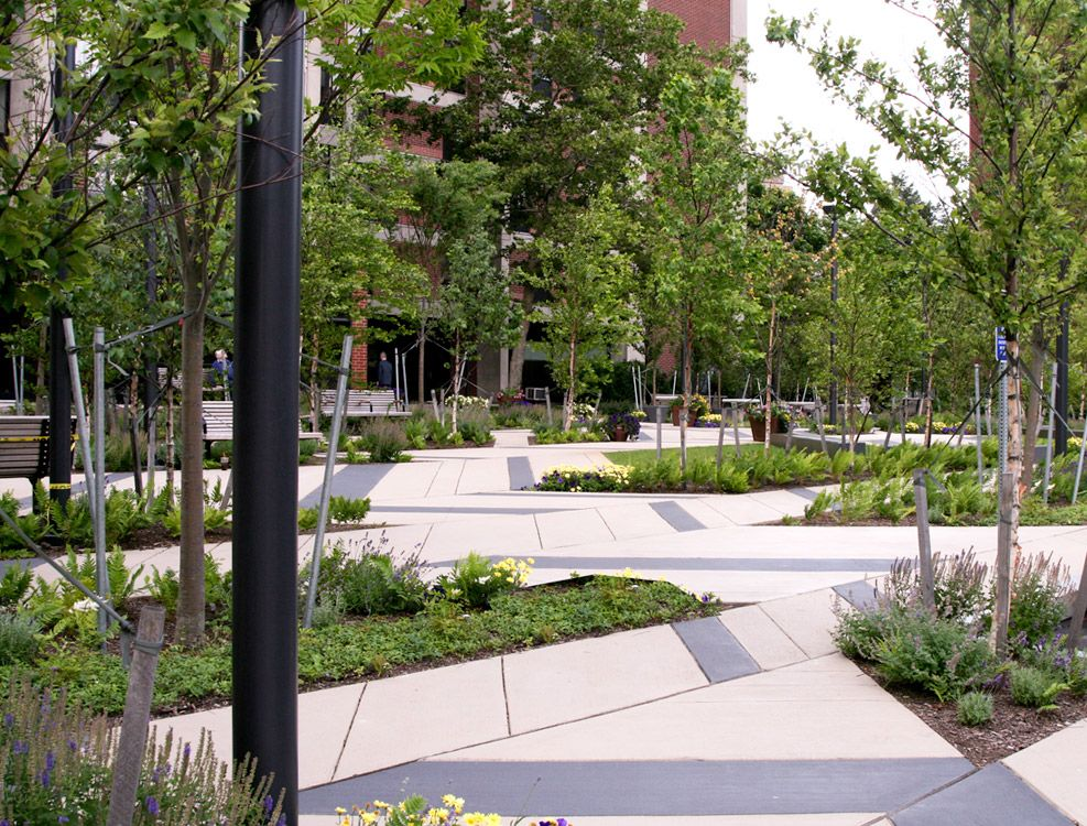 Mikyoung kim landscape architecture levinson plaza 11 for Park landscape design